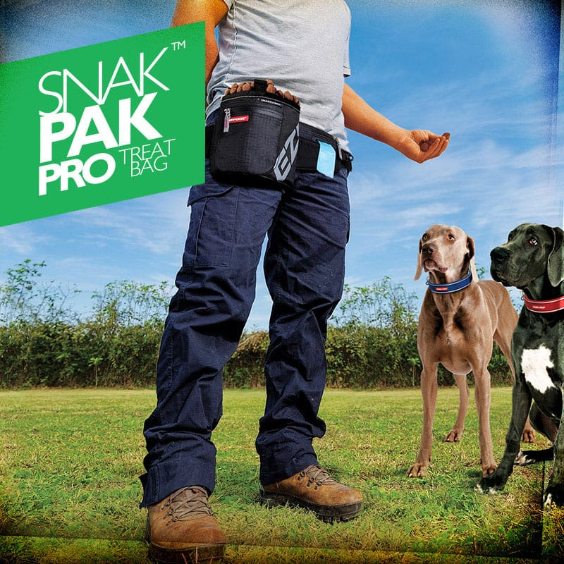 Dog Training Product - SnakPak Pro Treat Bag