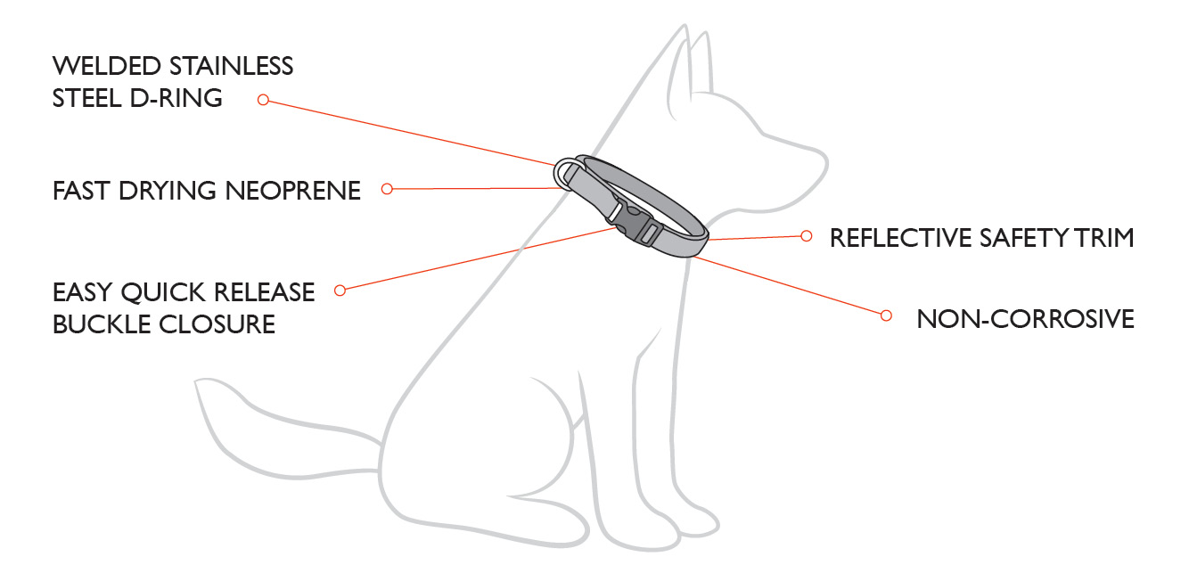 neo-collar-diagram.jpg