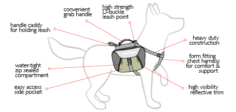 summit-backpack-diagram.jpg