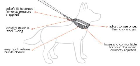 Checkmate Dog Training Collars