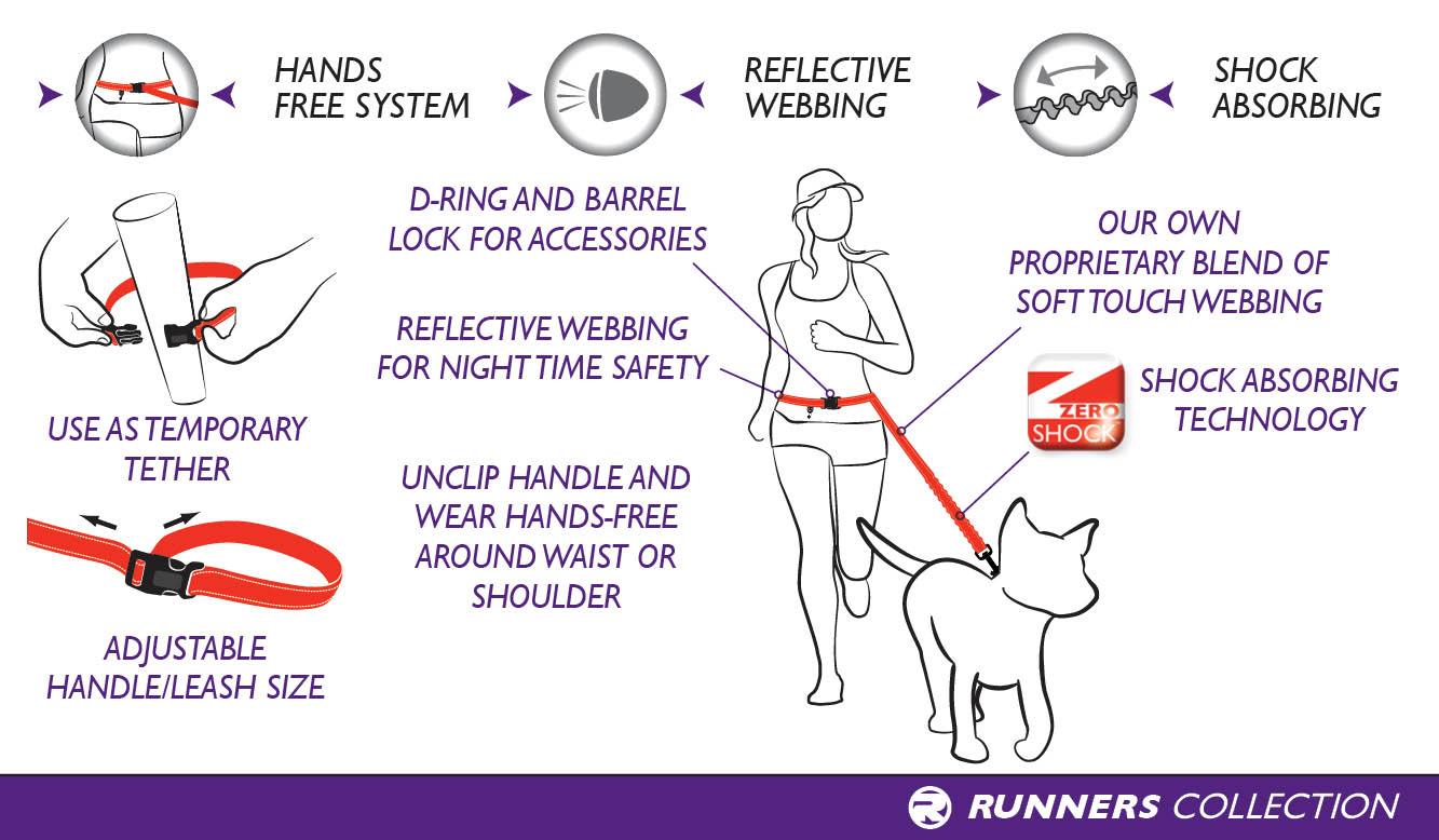 road-runner-dog-diagram-landscape-web.jpg
