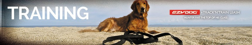 training-dogs-category-page.jpg