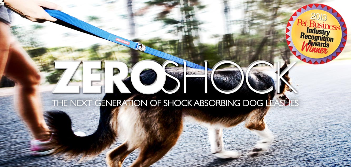 EzyDog Zero Shock Dog Leash