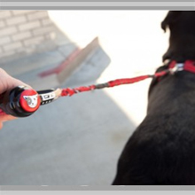 Large dog leashes category picture