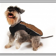 Small Dogs Apparel Category Image