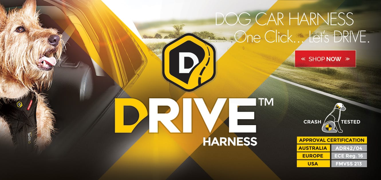 Drive Dog Car Harness
