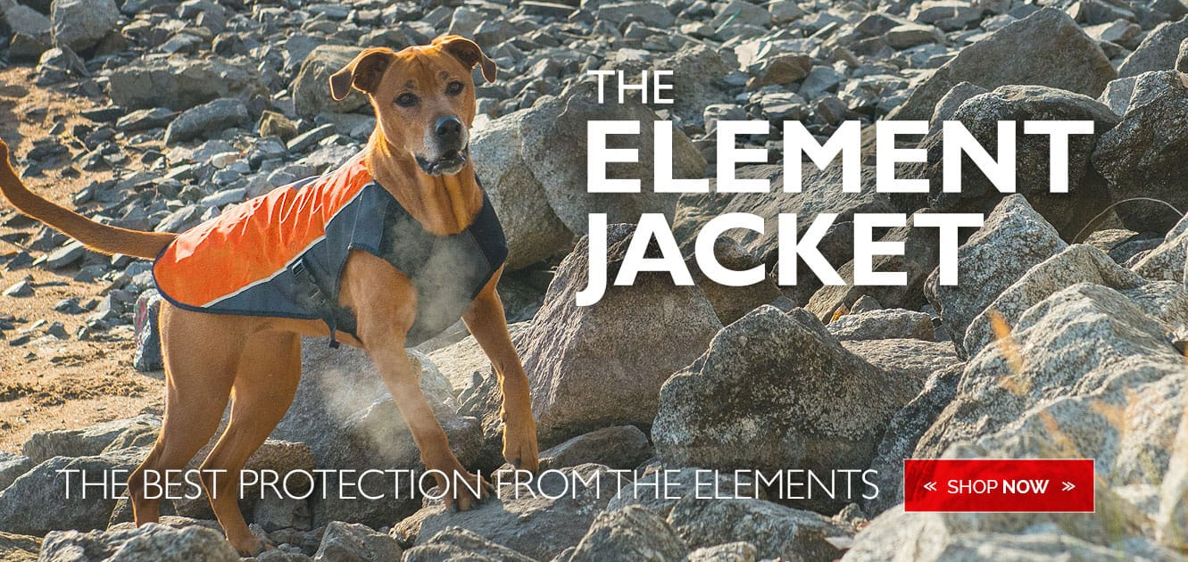 EzyDog Element Dog Jacket