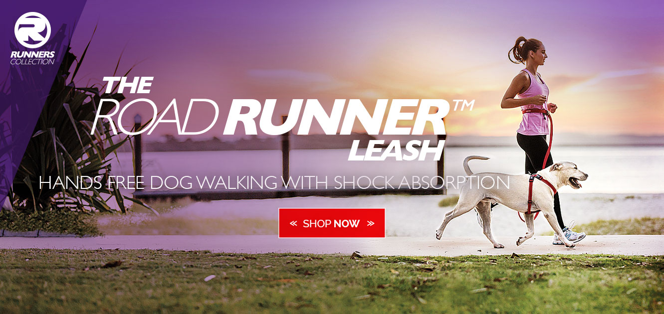 The Road Runner Leash