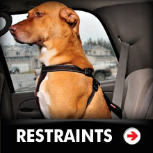 Dog Car Restraints Category Picture