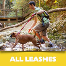 All Leashes