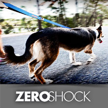 Zero Shock Leashes