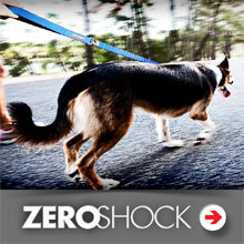 EzyDog Zero Shock Dog Leash Category Image