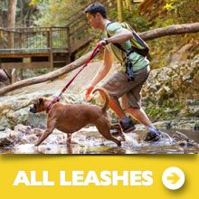 EzyDog All Leashes Category Image